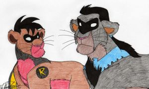 Robin and Nightwing by HaloSon