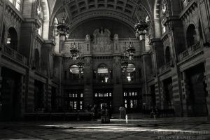 Kelvingrove Museum Hall by firepaved