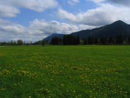 Germany - Field and Mountains by Bladewing-Stock