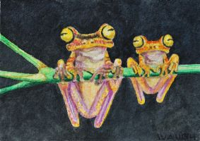ATC Tree Frogs on a Stick by waughtercolors