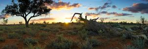 Australian Outback by seccy