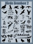 Birds    Brushes    Abr Pack 2 by Tetelle-passion