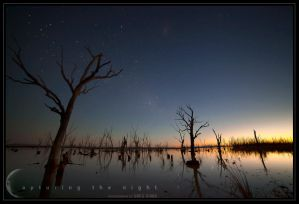 The Wetlands by CapturingTheNight