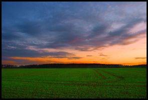 Green fields by JoInnovate