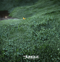The Jungle by betterways