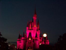Pink Cinderella's Castle by Dream-finder