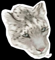 Snow Leopard Head by akeli