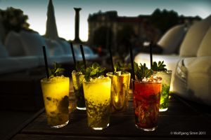 The Mojito family by wulfman65