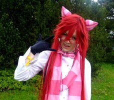 AF 2013 - Cheshire cat by Minami19