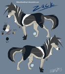 Zack Sheet 2015 by BlackDeaWing14