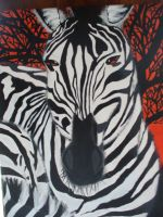 Zebra by Ayanami-The-Nuff