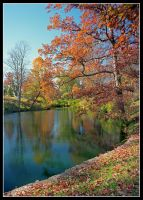 Spring Grove pond, vertical.img708 1 by harrietsfriend
