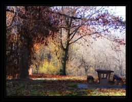 Autumn.......69 by gintautegitte69