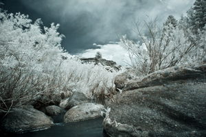 Infrared Stream by GambllingYouth