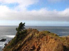 Ecola Cliff by FoxStox