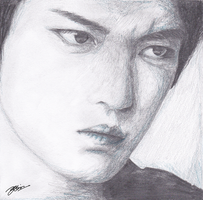 Kim Jaejoong: Mine by linilinilini