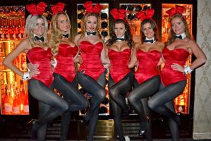 Easter Bunnies by Lord-Storm