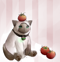 Tomato Cat by Meowisa-hui