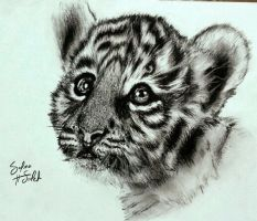 Charcoal baby tiger. by SalmaHSaleh