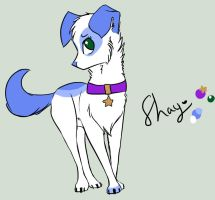 Shay, 2013 reference by Carlye