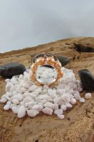 Orange and Silver Ring3 by Vor4
