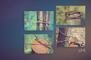 Rusty Four by eyefish