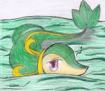 Pkmn-Sleepy Snivy by Nintendraw