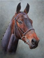 Race Horse Portrait by painterman33