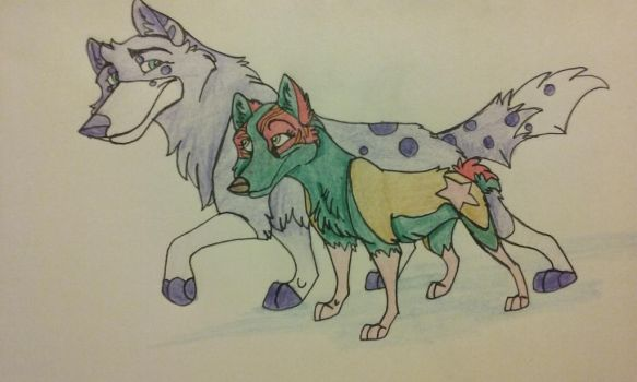 Norris and Star breed by sketch-wild