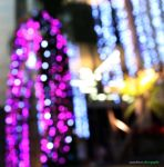 Bokeh Lights by munchinees