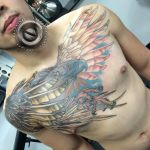 Great Philipine Eagle Finished by adammdesigns