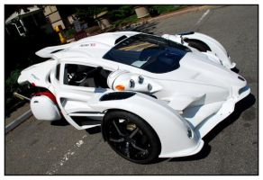 Campagna T-Rex I by Beerends