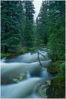 Middle Fork 2 by wyorev