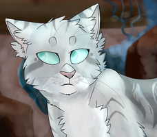 Jayfeather by Crookedly