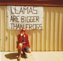 Llamas are bigger than frogs. by apami