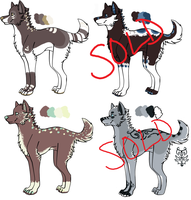 Point Adoptables 1 - GONE by Railguns