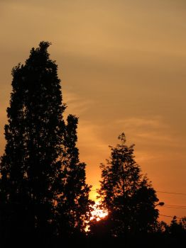 Peachy Evening Sky by Michies-Photographyy