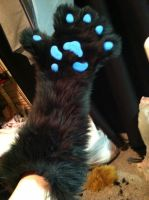 realistic canine paw by wolvescanlove
