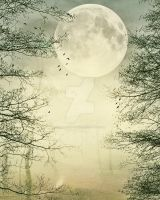 Forest with moon Background v2 FGM by FairieGoodMother
