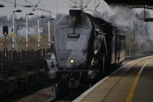 60007 'Sir Nigel Gresley' by DingRawD