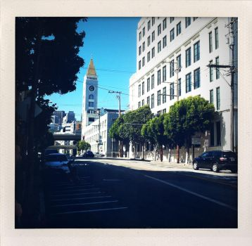 sun francisco by spotted