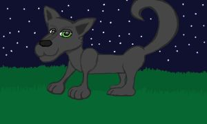 Gray Wolf in the Night by Amazing-Pineapples