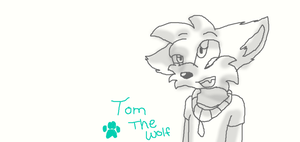 .:Commission:. Tom the Wolf by dreamer-the-wolf-3