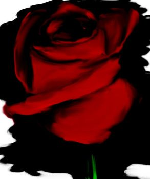 Red rose by LiDyxD