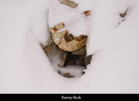 Snow rock cave- STOCK by Rainny-Stock
