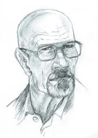 Walter White 2013a by BrianTyson