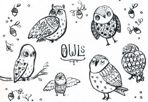 Many Owls by aberry89