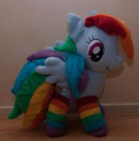 Rainbow Dash with socks by Yuukon