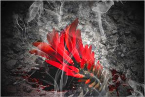 Red Smoke and Blood 1 by gors