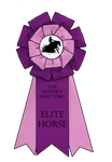 Elite horse ribbon by BlossomHillStables